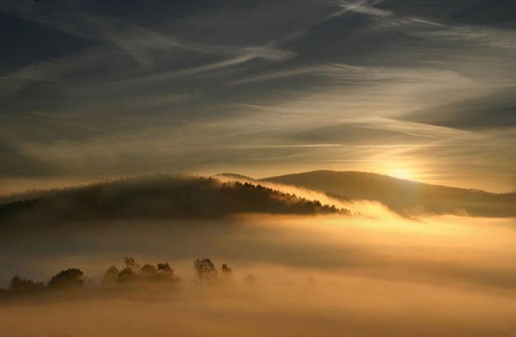 Misty mood by Veronika Pinke